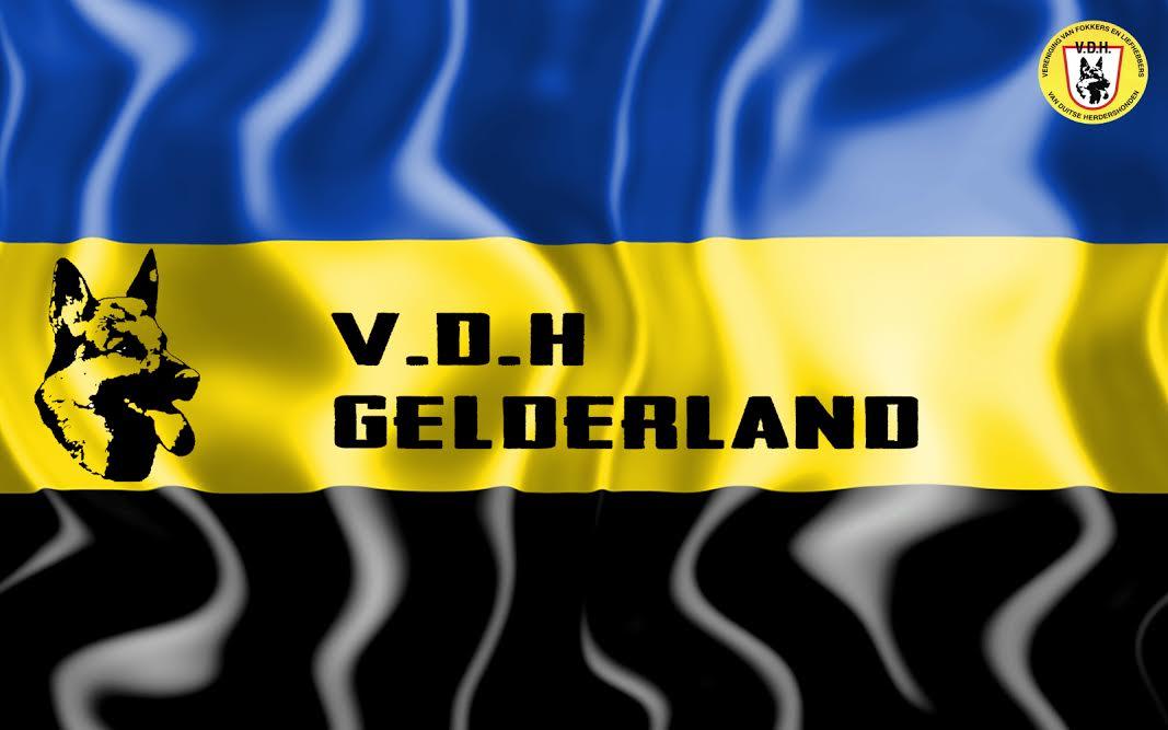 VDH-Gelderland